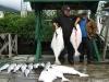 fishing-port-renfrew-british-columbia-canada-viciousfishcharter-010